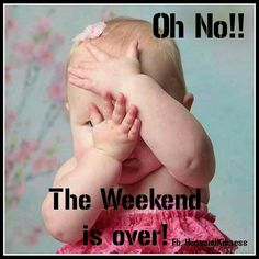 Weekend Quotes : The weekend is almost over, but have a blessed night - Quotes Sayings Hello Weekend, Friday Weekend, Happy Weekend, Weekend Is Over, Weekend Humor, Happy Monday, Wednesday, Sunday Quotes Funny, Monday Quotes
