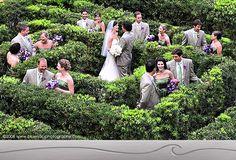 Imagine wedding pictures in the St. Louis Botanical Garden maze