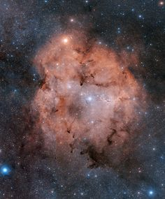 IC 1396: Emission Nebula in Cepheus  Image Credit: Digitized Sky Survey, ESA/ESO/NASA FITS Liberator  Color Composite: Davide De Martin (Skyfactory)