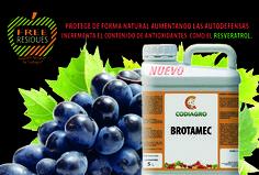 Brotamec protege los cultivos incrementado sus autodefensas, potencia la brotación y aumenta el nivel de antioxidantes activando el metabolismo secundario.