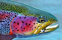 of July Rainbow by Montana-based artist Doug McKnight. of July Rainbow by Montana-based artist Doug McKnight. Trout Fishing Tips, Fly Fishing, Fishing Signs, Fishing Stuff, Fishing Games, Fishing Pictures, Saltwater Fishing, Watercolor Fish, Rainbow Painting