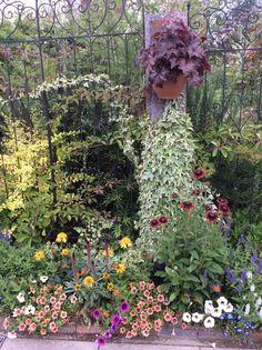 http://blog.livedoor.jp/witchwitch/ border garden