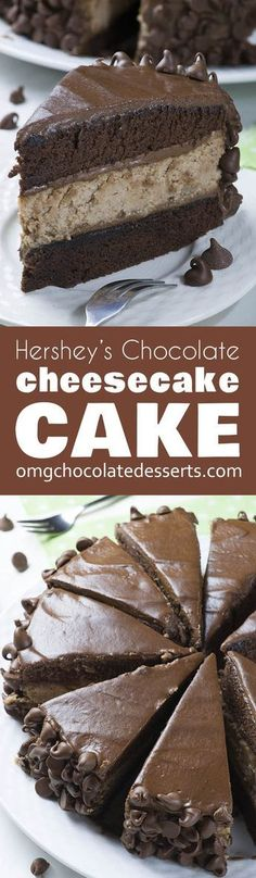 """Hershey's Chocolate Cheesecake Cake is rich and decadent combo of my favorite chocolate cheesecake and Hershey's """"Perfectly Chocolate"""" Chocolate Cake and frosting, surrounded with lots of chocolate chips!"""