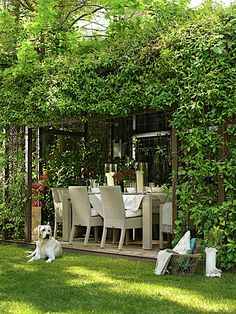 Bringing the outdoors in...garden elegance  And, of course, it never hurts to have a wagging tail spread the energy and the love around!