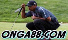 smarcONGA88.COMsmarc: smarc♥️♥️♥️ONGA88.COM♥️♥️♥️smarc Baseball Cards, Sports, Hs Sports, Sport