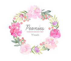 Hand Painted Watercolour Clip Art Peonies by PaperSunDesign