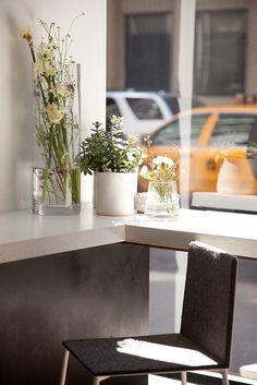 ABC Kitchen | New York