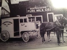 Thomas Henry White and wife , Olga Camenisch White, came to Murfreesboro in 1926. That same year, Henry and Olga's brother, Adolph, borrowed money from a local bank and began the Sanitary Pure Milk Co. in Murfreesboro. It was located behind the grocery store just off Maney Ave on Vine Street. By 1928 the brothers wished to extend the loan, but the bank refused.  They were forced to sell.