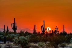 Sunset near Florence, AZ