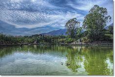 Parque Las Palomas | En Benalmádena, un buen lugar para pasa… | Flickr Benalmadena, Album, Mountains, Nature, Travel, Parks, Naturaleza, Viajes, Destinations