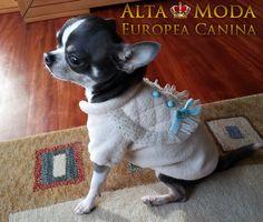 jerseys perros, moda canina jerseys