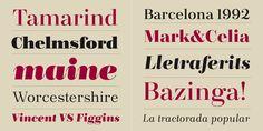 Bridone - Webfont & Desktop font « MyFonts