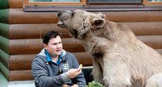 Família Russa Vive Com Um Urso Dentro De Casa e Tratam-no Como Animal De Estimação