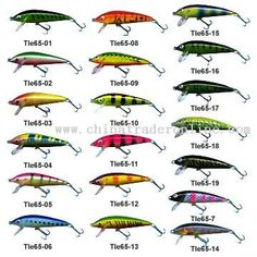 Fishing ideas on pinterest bowfishing saltwater fishing for Types of fishing lures