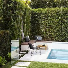 Bambooville (@bambooville.noravillegreen) posted on Instagram • Aug 19, 2019 at 1:54pm UTC Bamboo Screening, Backyard, Patio, Hedges, Your Space, Exotic, Nursery, Landscape, Outdoor Decor