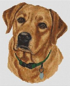 labrador embroidery designs Yellow Labrador Embroidery