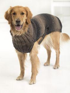 Free Knitting Pattern For Large Dog Sweater Google