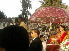 cherry festival, Sefrou, Morocco