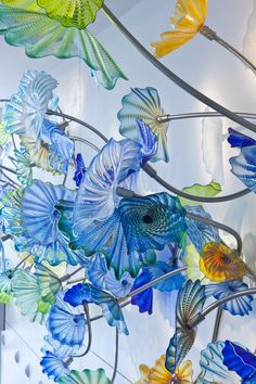Dale Chihuly - Ahuja Medical Center