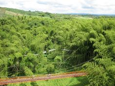The National Coffee Park is a theme park located in the department of Quindío, Colombia, 4 km south-west of the town of Montenegro and 11 km west of the departmental capital city Armenia.