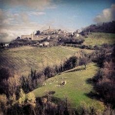 Montelparo in Fermo, Marche