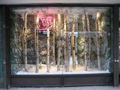 winter window display
