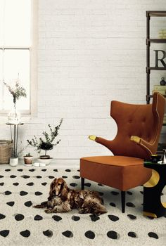 10 Astonishing Living Room Chairs That Will Spruce Up Your Space | Living Room Set. Modern Chairs. Armchair. #modernchairs #armchair #livingroomdesign Read more: http://www.brabbu.com/en/inspiration-and-ideas/interior-design/astonishing-living-room-chairs-spruce-space