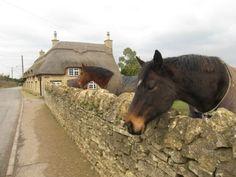 Aldwincle village, Northamptonshire http://www.picturesofengland.com/England/tour/English_Cottages/pictures/1144650
