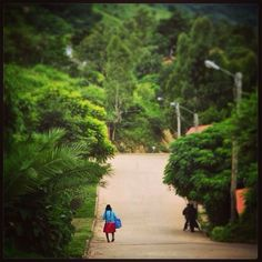 DAY 112 - Street view of lush green Samaipata, Bolivia