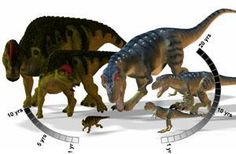 Duck-Billed Dinosaurs Grew fast to avoid Tyrannosaurs