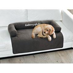 Hundekissen, Lieblingsplatz Katalogbild