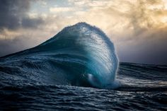 Fold By Ray Collins