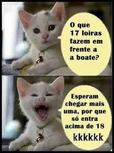 Funny memes animals hilarious faces 57 Ideas for 2019 I Love Cats, Crazy Cats, Gato Do Face, Funny Animals, Cute Animals, Animal Fun, Funny Cat Faces, Cool Pets, Funny Photos