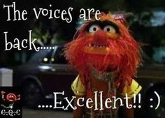 The Muppets Movie Quotes Funny Shit, Haha Funny, Funny Memes, Funny Stuff, Funny Things, Funny Quotes, Tv Quotes, Random Stuff, Puns Jokes