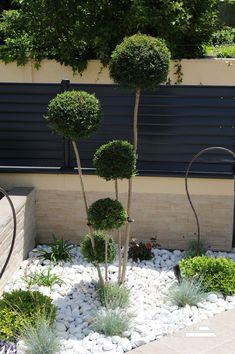 White Pebble Garden, White Pebbles, Small Courtyards, Backyard Garden Design, Rooftop Terrace, Ornamental Grasses, Pool Landscaping, Garden Inspiration, Exotic