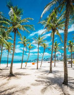 You can never be done traveling! Copacabana Beach, Brazil Carnival, Brazil Travel, Destination Voyage, Summer Travel, Beautiful Beaches, The Good Place, Places To Go, Honeymoons