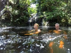 The Garden Route abounds with day walks. For hikers wanting to immerse themselves in pristine indigenous in close proximity to Knysna, the two Woodcutter Trails will revitalize your entire being. Knysna, Close Proximity, Trail, Swimming, Garden, Outdoor Decor, Swim, Garten, Lawn And Garden