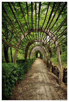 The Garden of the marquesyssac, Perigord, dordogne. Garden Structures, Garden Paths, Garden Art, Rustic Gardens, Outdoor Gardens, Garden Arches, Aquaponics System, Parcs, Topiary
