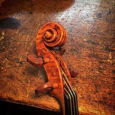 Scroll on my latest Balestrieri copy. I found a nice set of older Bois d'Harmonie fittings for this violin. #balestrieri #violin #liuteria #luthier #lovemyjob #antiquing
