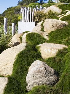 24 Amazing landscaping with boulders design ideas - Would you like to be the envy of your neighbors with a garden that stands out and suggests WOW! Have you worn out of the identical aged grass, trees, and Landscaping With Boulders, Backyard Landscaping, Landscaping Ideas, Farmhouse Landscaping, Landscape Architecture, Landscape Design, Garden Design, Creative Landscape, Australian Native Garden