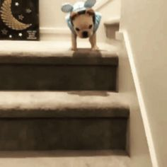 How can I safely go down the stairs