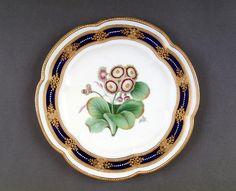 Coalport Porcelain (Shropshire, England) — Plate, c.1860's (677x550)