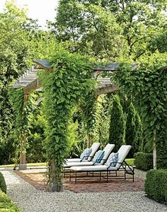 Enveloping greenery promotes relaxation for both eyes and spirit in a shady retreat paved with brick and bordered with pea gravel.