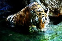 Fractal tiger wallpaper tiger eyes wallpaper tigers pinterest tiger 3838 f digital art by artist james ahn tiger tigerart tigerfractal thecheapjerseys Gallery