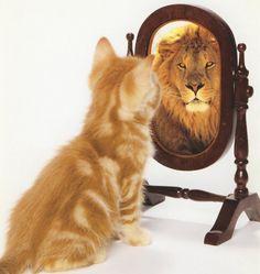 Du bist viel stärker als Du denkst