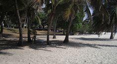 Tiwi Beach Camping