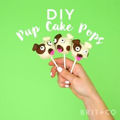 Make a batch of adorable Pup Cake Pops with this creative dessert video DIY recipe tutorial.