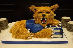 university of kentucky cake - Google Search