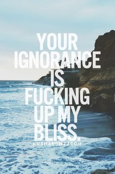 I always become the most brashest person when someone shows absolute stupid ignorance,