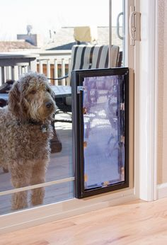 Locked Patio Large Pet Door - Pets come in all different sizes. Affordable Windows makes your pet's safety, security, and fit all a priority when choosing a pet door. Customize your pet door in size and ensure your pet's safety with the soft, flexible flaps that allow for easy pet access with no exposed screws to harm your pet featured on the locked patio pet door